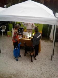 vegan fest 2011   camaiore 20110427 1549119973 960x300 - VEGAN FEST 2011- 22/25 APRILE - CAMARIORE