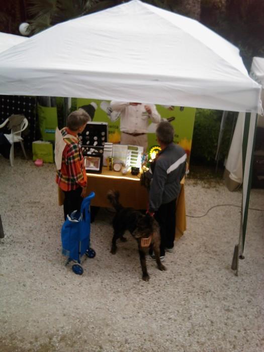 vegan fest 2011   camaiore 20110427 1549119973 - VEGAN FEST 2011- 22/25 APRILE - CAMARIORE