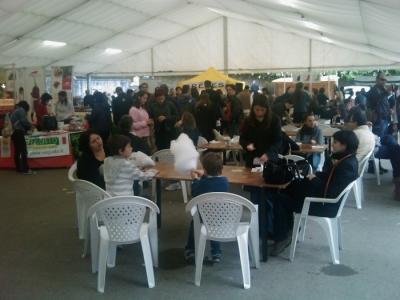 vegan fest 2011   camaiore 20110427 1602515944 960x300 - VEGAN FEST 2011- 22/25 APRILE - CAMARIORE