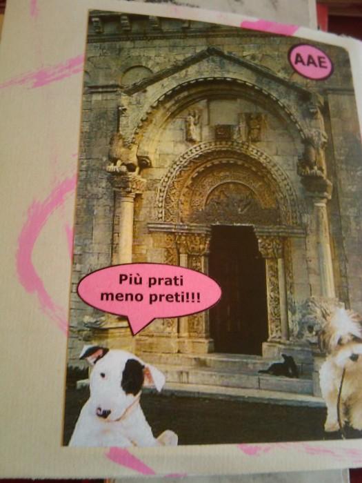 vegan fest 2011   camaiore 20110427 1608609094 - VEGAN FEST 2011- 22/25 APRILE - CAMARIORE