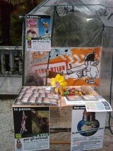 vegan fest 2011   camaiore 20110427 1633072694 960x300 - VEGAN FEST 2011- 22/25 APRILE - CAMARIORE