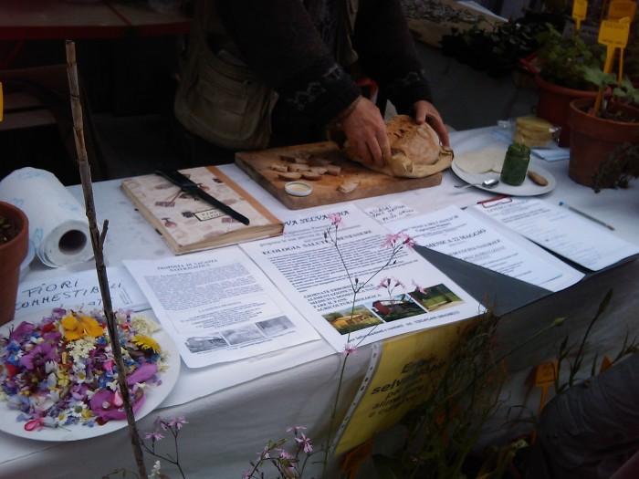 vegan fest 2011   camaiore 20110427 1920873822 - VEGAN FEST 2011- 22/25 APRILE - CAMARIORE