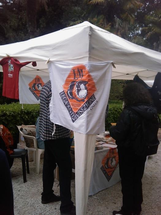 vegan fest 2011   camaiore 20110427 2008678580 - VEGAN FEST 2011- 22/25 APRILE - CAMARIORE
