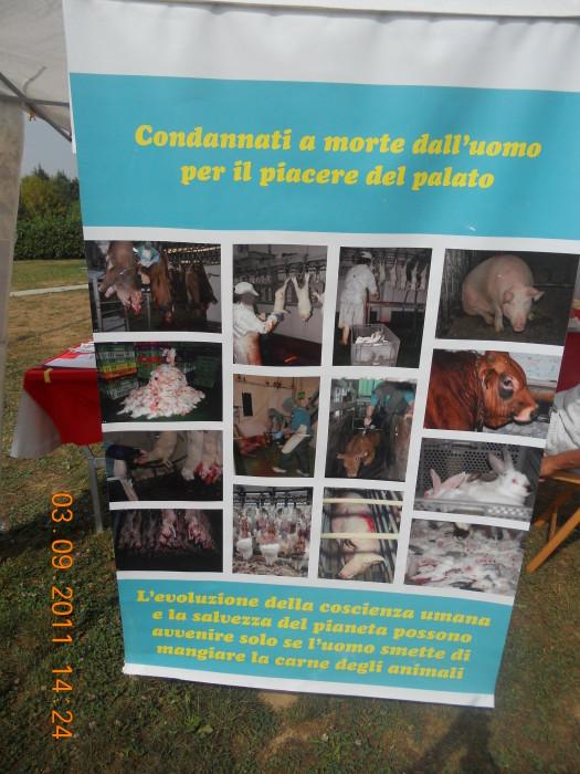 veganc 20130212 1267909118 - VEGANCH'IO 2011 - 2011-
