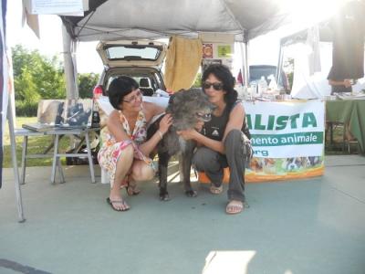 veganchio 2012 20120709 1177822295 960x300 - VEGANCH'IO 2012 - 6/7/8 LUGLIO - 2012-