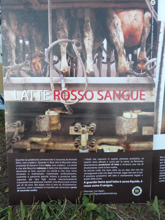 veganchio 2012 20120709 1178166955 - VEGANCH'IO 2012 - 6/7/8 LUGLIO - 2012-