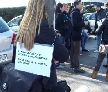 vicenza presidio hunting  20130212 1383634579 960x300 - Vicenza Presidio Hunting Show (19 Febbraio)