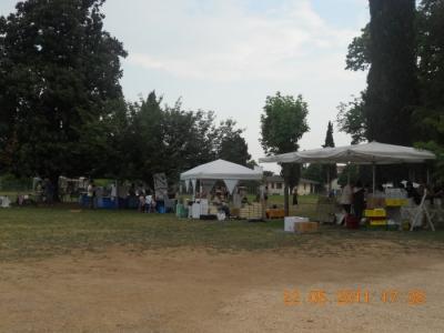 villaggio ve 20130212 1327542160 960x300 - TAVOLO ANIMALS ASIA - Giavera del Montello (TV) - 22 maggio - 2011-