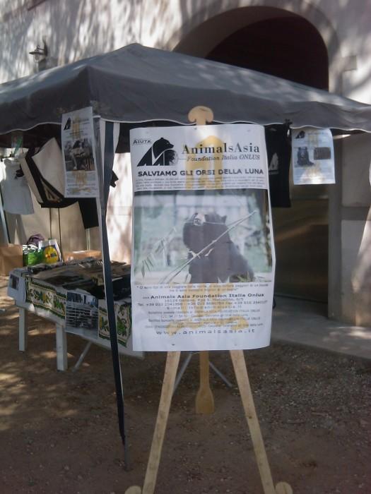 villaggio ve 20130212 1584967262 - TAVOLO ANIMALS ASIA - Giavera del Montello (TV) - 22 maggio - 2011-