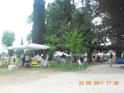 villaggio ve 20130212 1607859811 960x300 - TAVOLO ANIMALS ASIA - Giavera del Montello (TV) - 22 maggio - 2011-