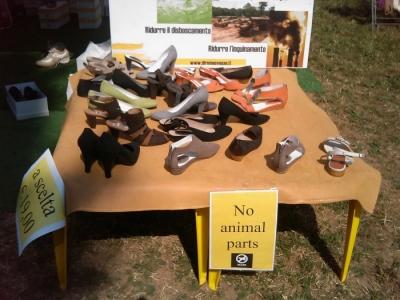 villaggio ve 20130212 2054254263 960x300 - TAVOLO ANIMALS ASIA - Giavera del Montello (TV) - 22 maggio - 2011-