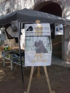 villaggio vegano 20110523 1286745216 960x300 - TAVOLO ANIMALS ASIA - Giavera del Montello (TV) - 22 maggio - 2011-