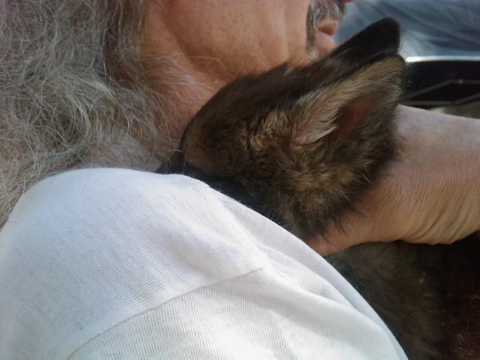 villaggio vegano 20110523 1599749816 - TAVOLO ANIMALS ASIA - Giavera del Montello (TV) - 22 maggio - 2011-