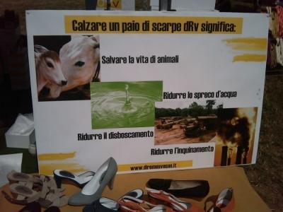 villaggio vegano 20110523 1845757967 960x300 - TAVOLO ANIMALS ASIA - Giavera del Montello (TV) - 22 maggio - 2011-