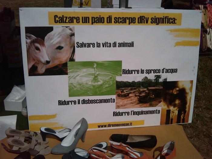 villaggio vegano 20110523 1845757967 - TAVOLO ANIMALS ASIA - Giavera del Montello (TV) - 22 maggio - 2011-
