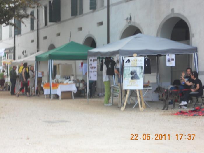 villaggio vegano 20110524 1257901029 - TAVOLO ANIMALS ASIA - Giavera del Montello (TV) - 22 maggio - 2011-