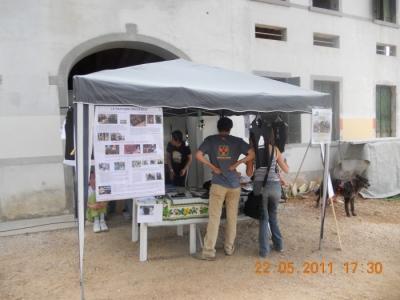 villaggio vegano 20110524 1398455259 960x300 - TAVOLO ANIMALS ASIA - Giavera del Montello (TV) - 22 maggio - 2011-
