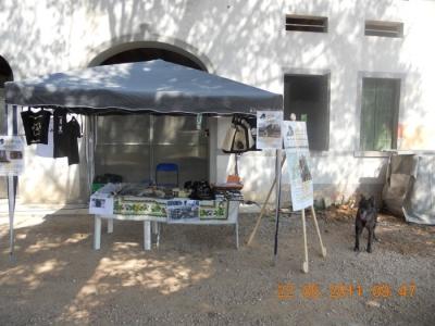 villaggio vegano 20110524 1526942449 960x300 - TAVOLO ANIMALS ASIA - Giavera del Montello (TV) - 22 maggio - 2011-