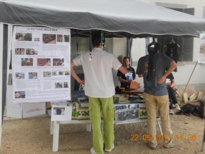 villaggio vegano 20110524 1550656014 960x300 - TAVOLO ANIMALS ASIA - Giavera del Montello (TV) - 22 maggio - 2011-