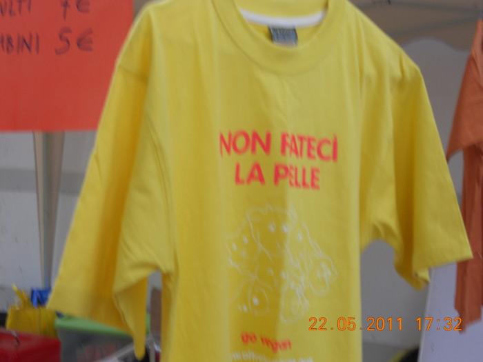 villaggio vegano 20110524 1894222931 - TAVOLO ANIMALS ASIA - Giavera del Montello (TV) - 22 maggio - 2011-
