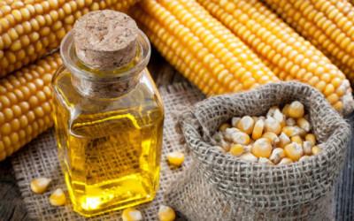 olio di mais e1456590257207 400x250 1 - Olio di mais: proprietà e benefici - ricette-vegane-dal-web-