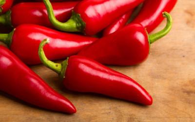 shutterstock 84148876 e1455884390755 400x250 1 - Perchè è piccante il peperoncino? Grazie alla capsaicina… - ricette-vegane-dal-web-