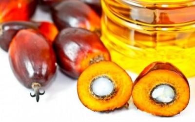 shutterstock 94650427 e1431616439244 400x250 1 - L'olio di palma fa male: effetti su salute e ambiente