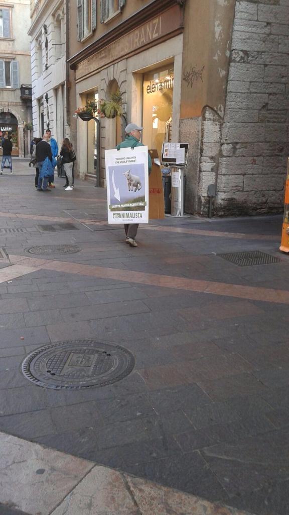 IMG 20160326 WA0055 - Manifestazione a Trento in difesa degli agnelli a Pasqua 24-25-26 Marzo - Parte 2 - 2016-