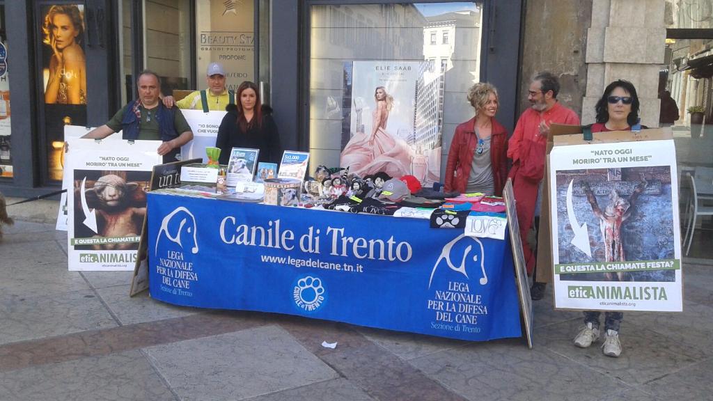 IMG 20160326 WA0057 - Manifestazione a Trento in difesa degli agnelli a Pasqua 24-25-26 Marzo - Parte 2 - 2016-