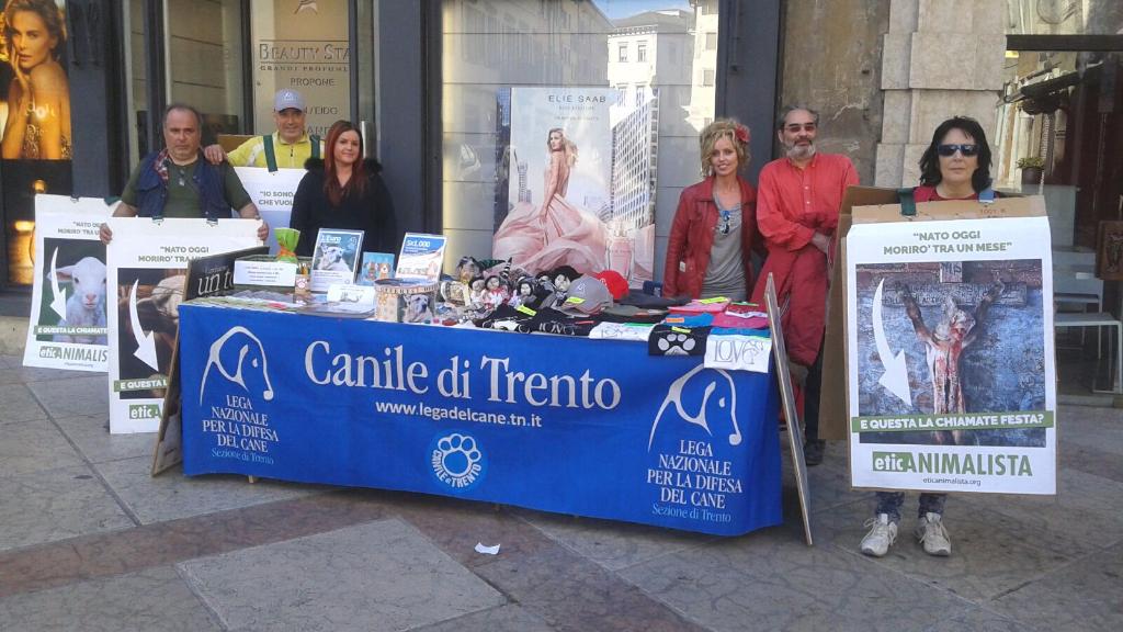 IMG 20160326 WA0061 - Manifestazione a Trento in difesa degli agnelli a Pasqua 24-25-26 Marzo - Parte 2