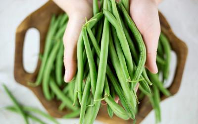 coltivare fagiolini41 400x250 1 - Come coltivare fagiolini in vaso e a terra