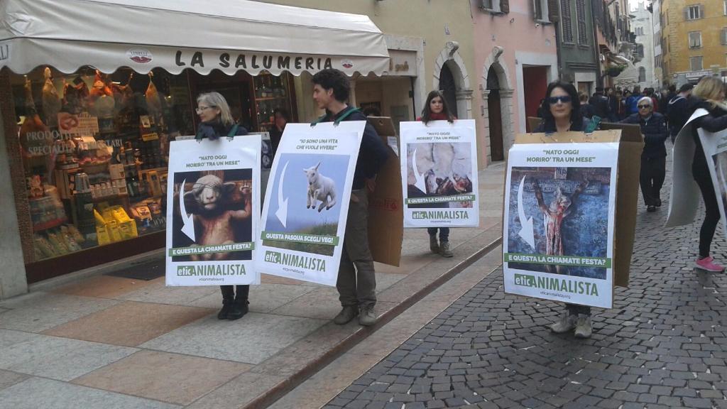 trento manifestazione pasqua difesa agnelli 10 - Manifestazione a Trento in difesa degli agnelli a Pasqua 24-25-26 Marzo - 2016-