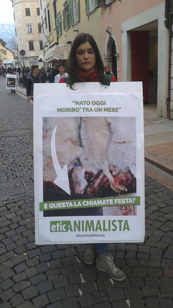 trento manifestazione pasqua difesa agnelli 11 - Manifestazione a Trento in difesa degli agnelli a Pasqua 24-25-26 Marzo - 2016-