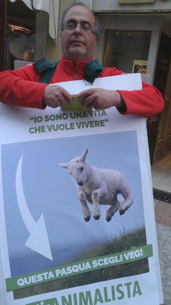trento manifestazione pasqua difesa agnelli 14 - Manifestazione a Trento in difesa degli agnelli a Pasqua 24-25-26 Marzo - 2016-