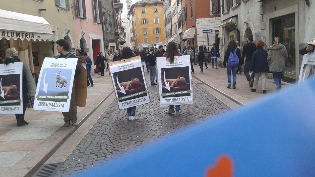 trento manifestazione pasqua difesa agnelli 15 - Manifestazione a Trento in difesa degli agnelli a Pasqua 24-25-26 Marzo - 2016-