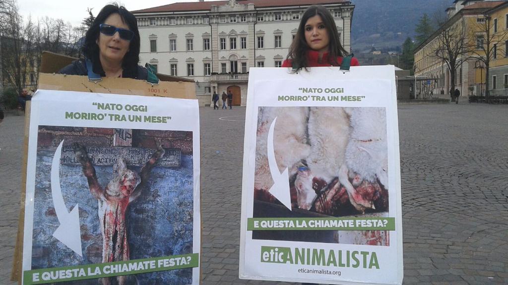 trento manifestazione pasqua difesa agnelli 16 - Manifestazione a Trento in difesa degli agnelli a Pasqua 24-25-26 Marzo - 2016-
