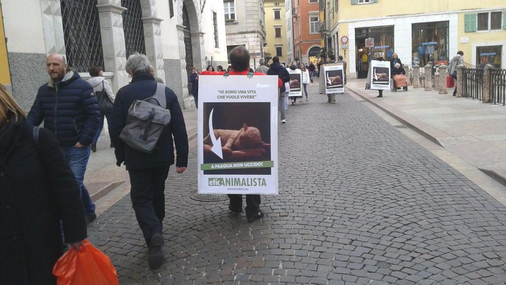 trento manifestazione pasqua difesa agnelli 2 - Manifestazione a Trento in difesa degli agnelli a Pasqua 24-25-26 Marzo - 2016-