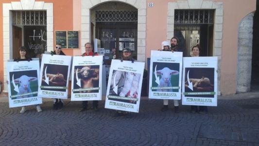 trento manifestazione pasqua difesa agnelli 3 1024x576 960x300 - Manifestazione a Trento in difesa degli agnelli a Pasqua 24-25-26 Marzo - 2016-