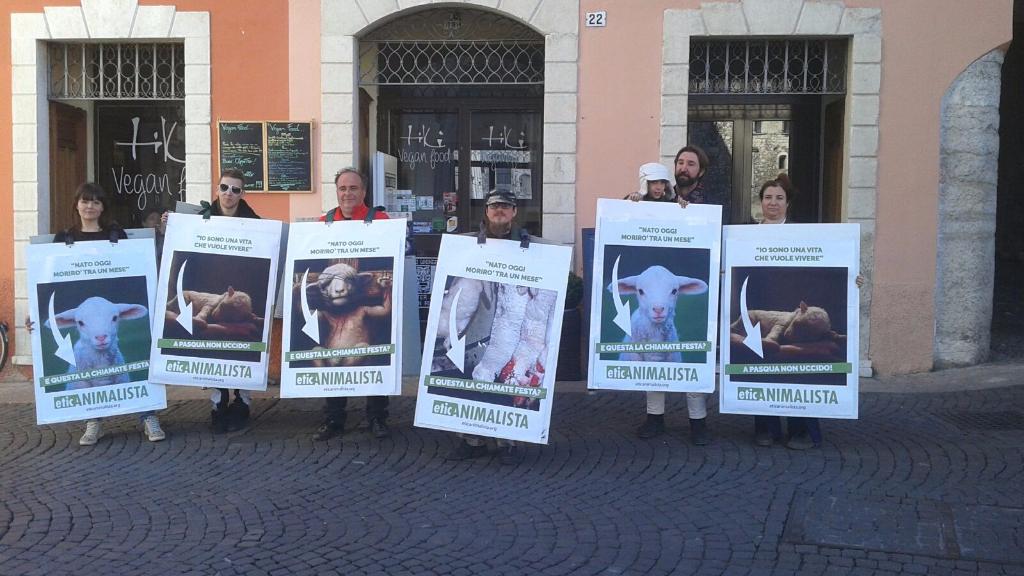 trento manifestazione pasqua difesa agnelli 3 - Manifestazione a Trento in difesa degli agnelli a Pasqua 24-25-26 Marzo - 2016-