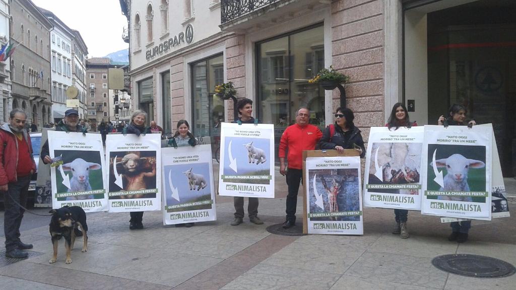 trento manifestazione pasqua difesa agnelli 4 - Manifestazione a Trento in difesa degli agnelli a Pasqua 24-25-26 Marzo - 2016-