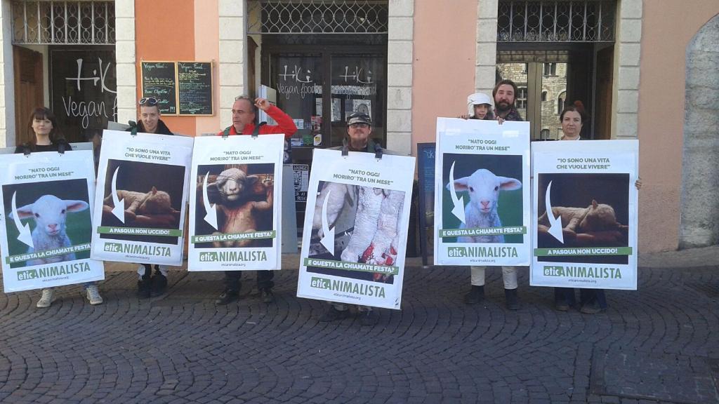 trento manifestazione pasqua difesa agnelli 5 - Manifestazione a Trento in difesa degli agnelli a Pasqua 24-25-26 Marzo - 2016-