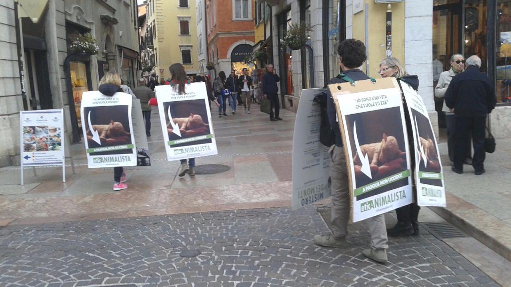 trento manifestazione pasqua difesa agnelli 6 - Manifestazione a Trento in difesa degli agnelli a Pasqua 24-25-26 Marzo - 2016-