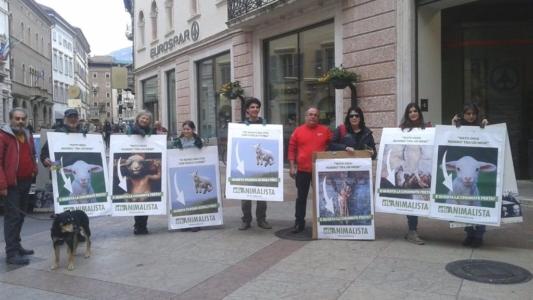 trento manifestazione pasqua difesa agnelli 7 1024x576 960x300 - Manifestazione a Trento in difesa degli agnelli a Pasqua 24-25-26 Marzo - 2016-