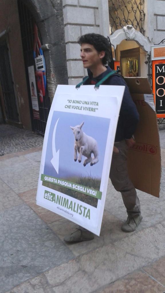 trento manifestazione pasqua difesa agnelli 8 - Manifestazione a Trento in difesa degli agnelli a Pasqua 24-25-26 Marzo - 2016-