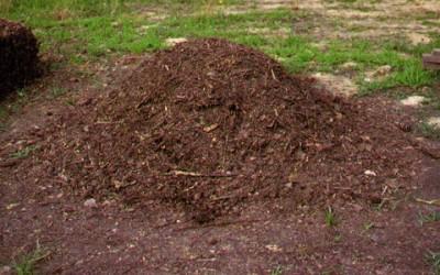 compost 400x250 1 - Come fare il compost: la guida al compostaggio domestico