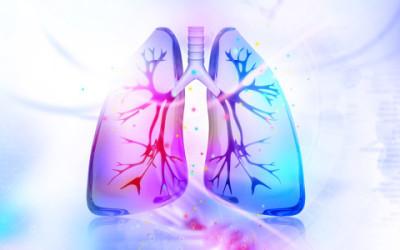 shutterstock 291014192 e1459771532501 400x250 1 - Come pulire i polmoni dal fumo in modo naturale