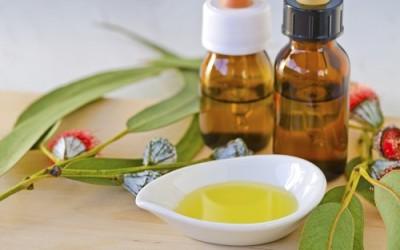 eucalipto olio essenziale 400x250 - Olio essenziale eucalipto: proprietà e utilizzi - ricette-vegane-dal-web-