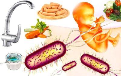 listeria slider 400x250 1 - Listeria negli alimenti: un batterio che può uccidere - ricette-vegane-dal-web-