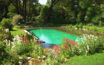 biopiscine 400x250 1 - Biopiscine: arriva la piscina naturale che non contiene cloro - ricette-vegane-dal-web-