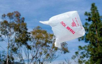 busta 1 400x250 1 - Illegali metà dei sacchetti in bioplastica che circolano in Italia